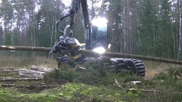 【動画】枝を落として丸太をカットする究極木こり重機が凄すぎる