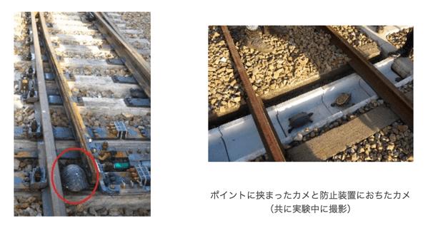 須磨海浜水族館がJR西日本と協力してカメによる列車輸送障害を防ぐ技術を開発