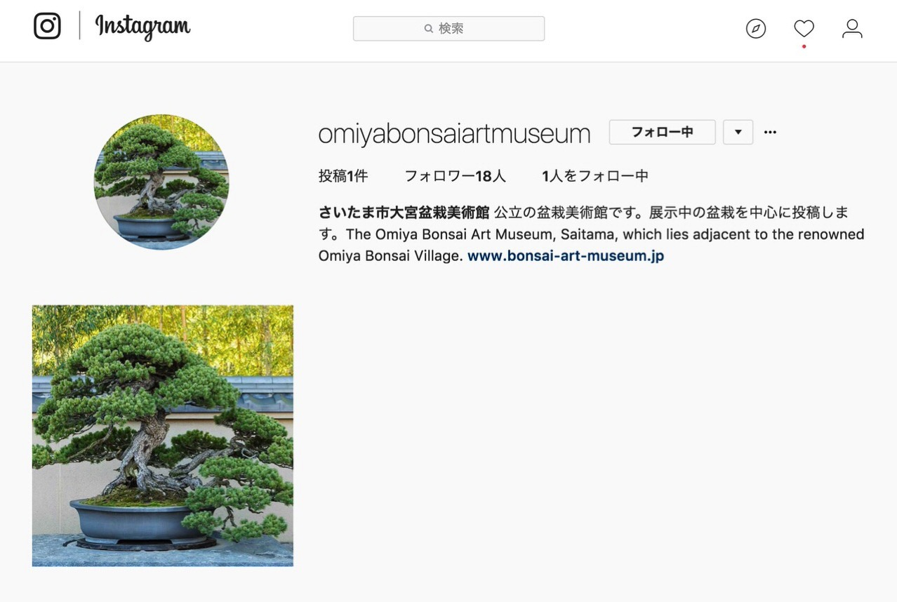 大宮盆栽美術館がInstagramアカウントを開設