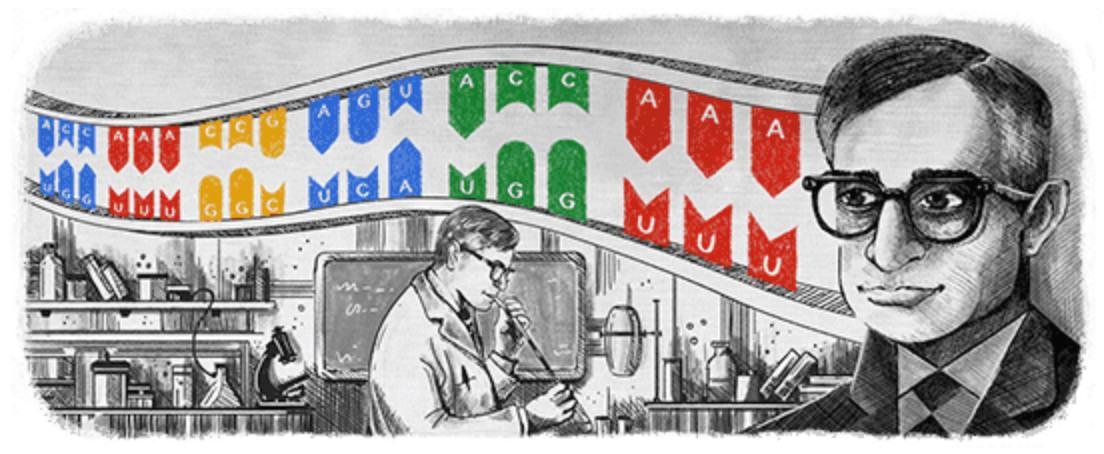 Googleロゴ「ハー ゴビンド コラナ」に(分子生物学者)