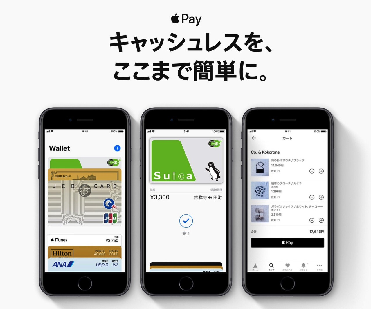 【Apple Pay】JALカード「Visa/Mastercard/TOKYU POINT ClubQ」が対応