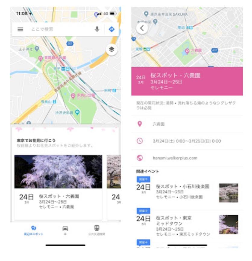 【Googleマップ】桜に関する情報を期間限定で表示
