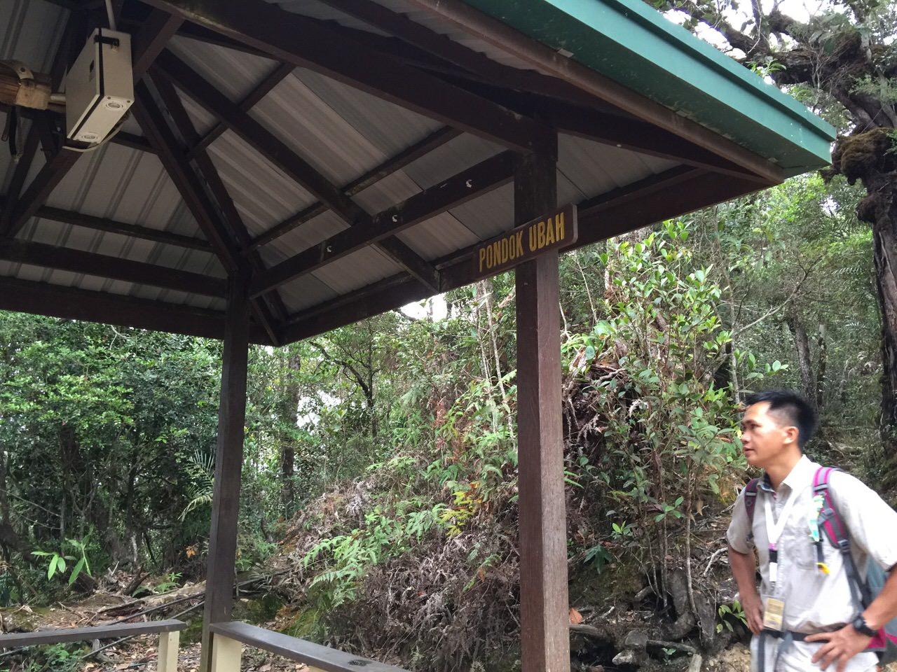 Kota Kinabalu climbing 3993