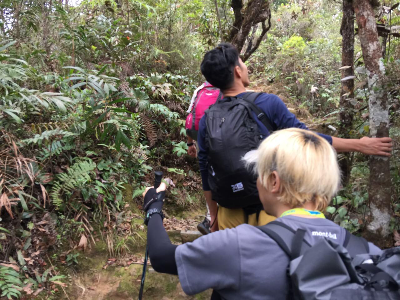 Kota Kinabalu climbing 4003