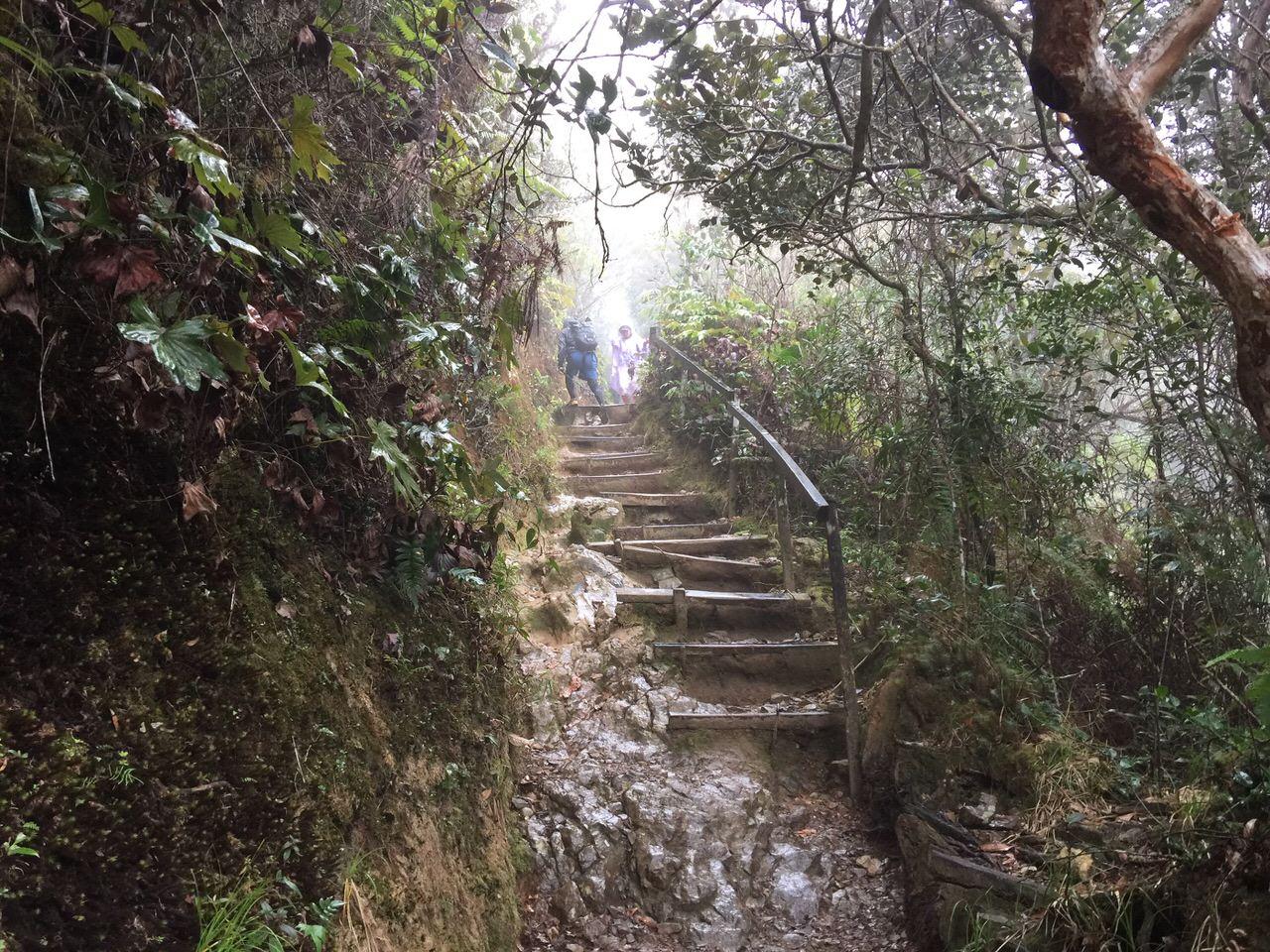 Kota Kinabalu climbing 4008