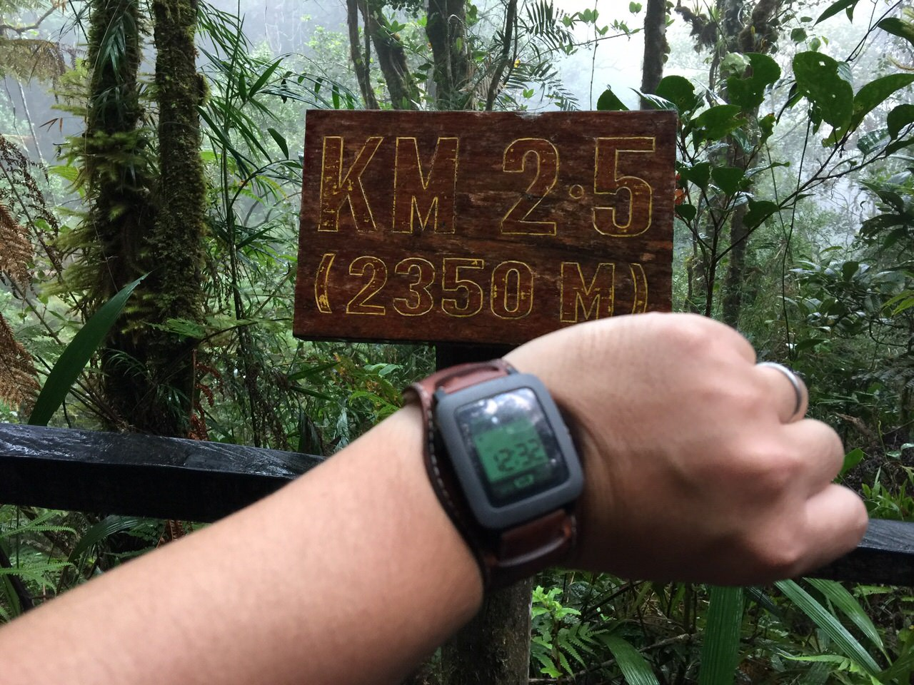 Kota Kinabalu climbing 4014