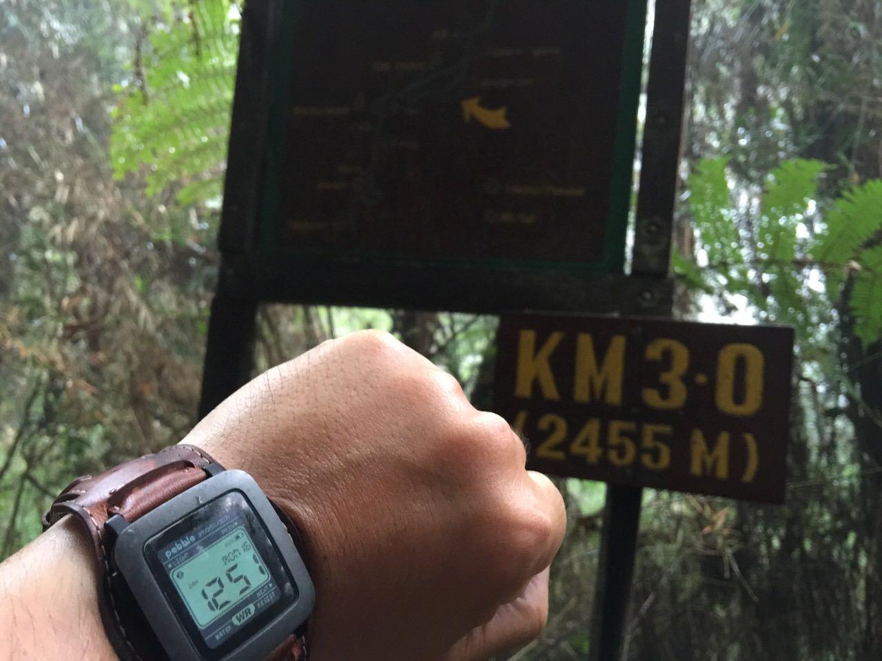 Kota Kinabalu climbing 4016