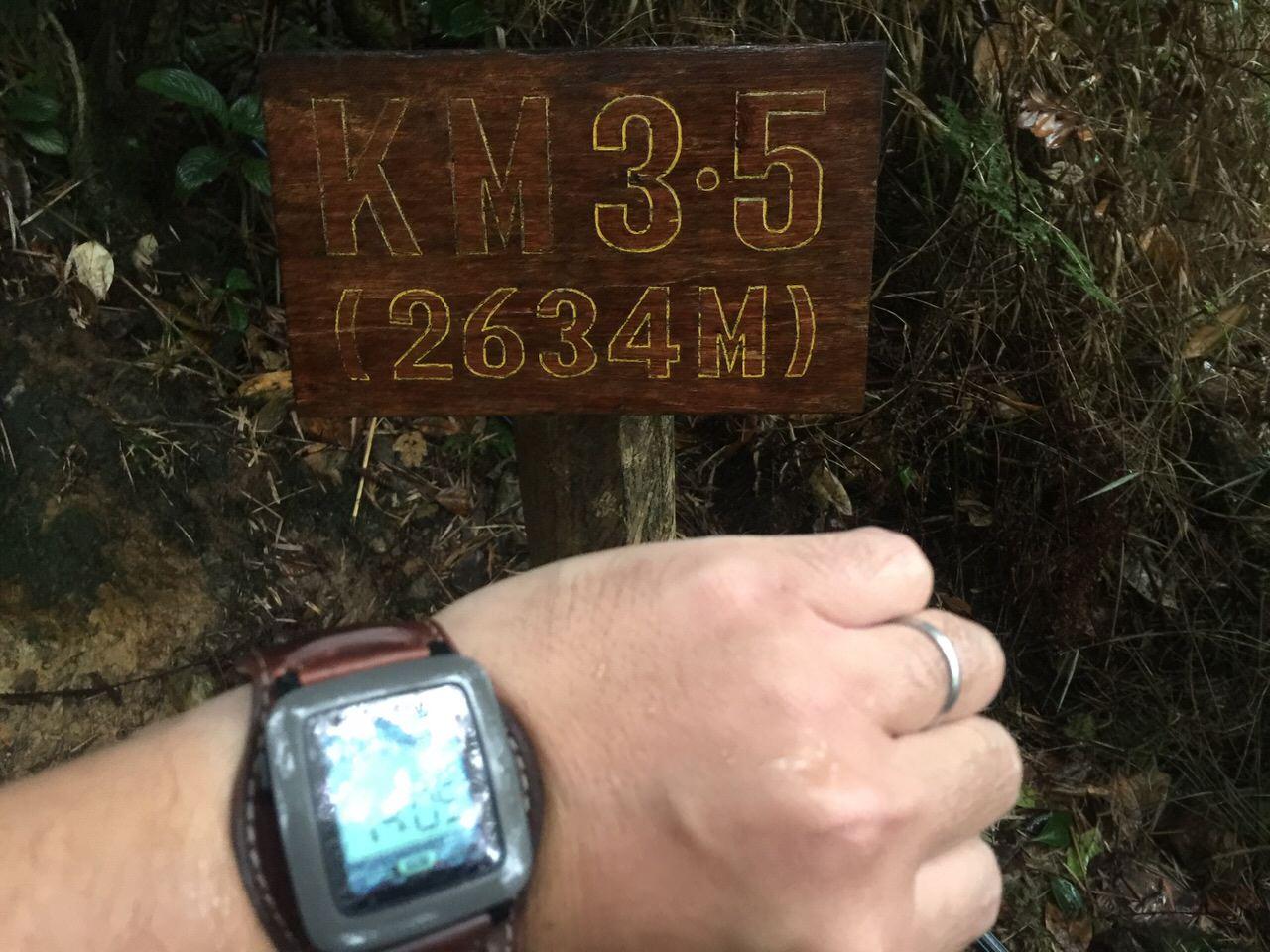 Kota Kinabalu climbing 4030