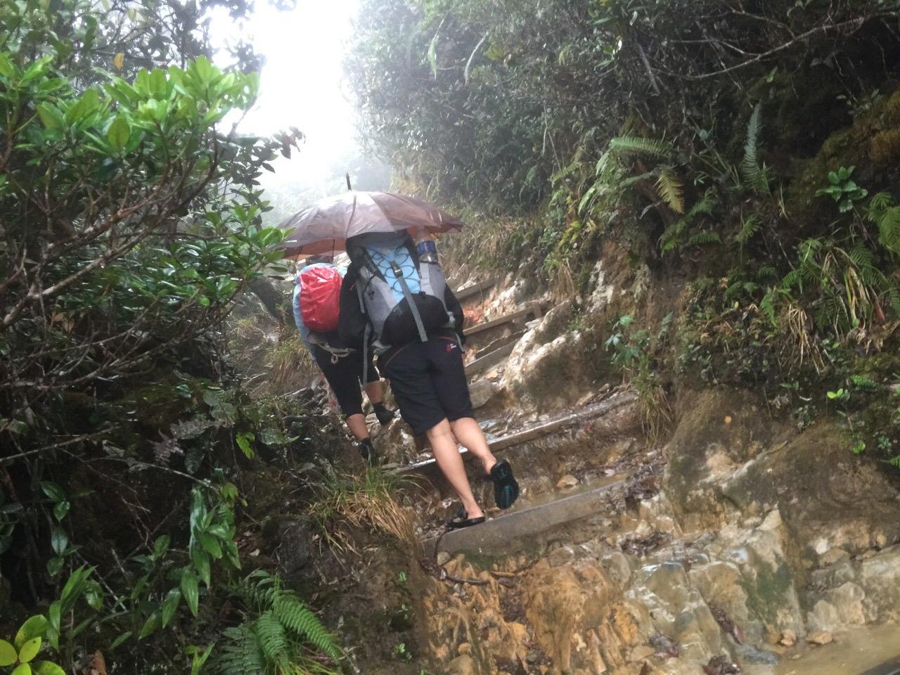 Kota Kinabalu climbing 4031