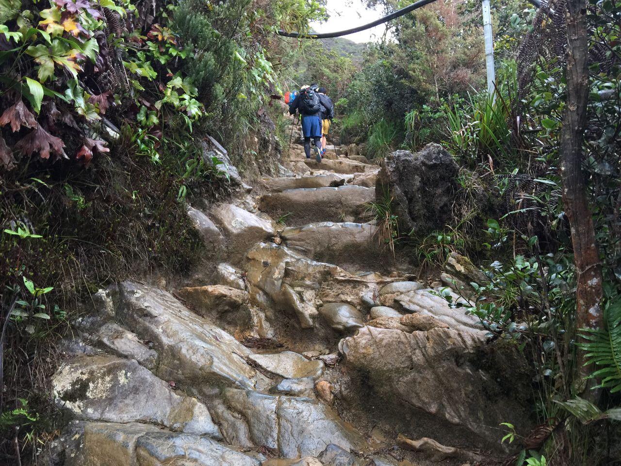 Kota Kinabalu climbing 4051