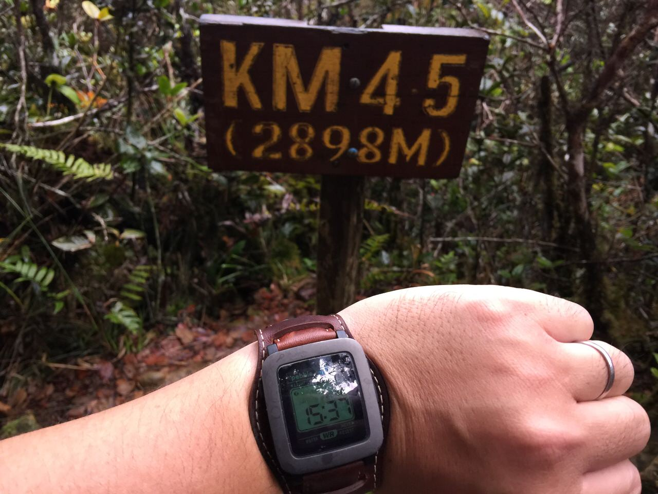 Kota Kinabalu climbing 4071