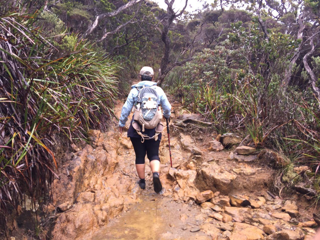Kota Kinabalu climbing 4074
