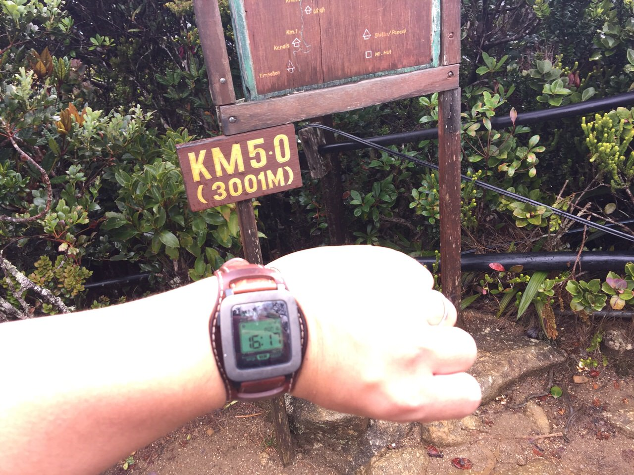 Kota Kinabalu climbing 4084