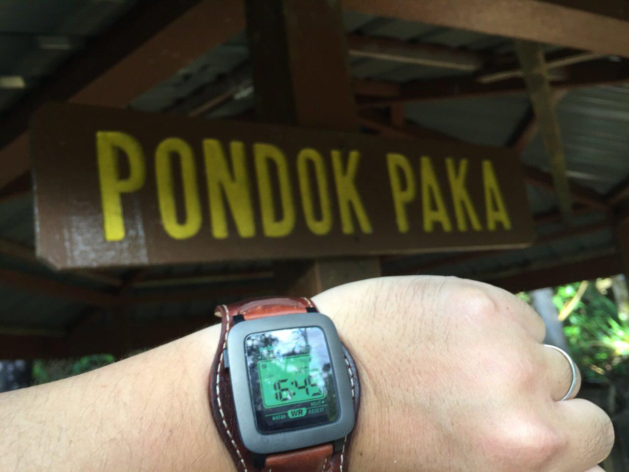 Kota Kinabalu climbing 4090
