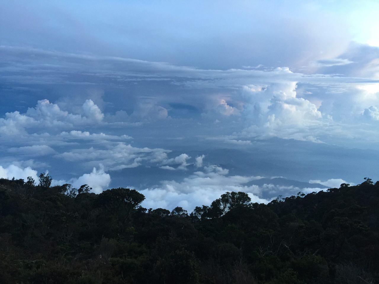 Kota Kinabalu climbing 4115