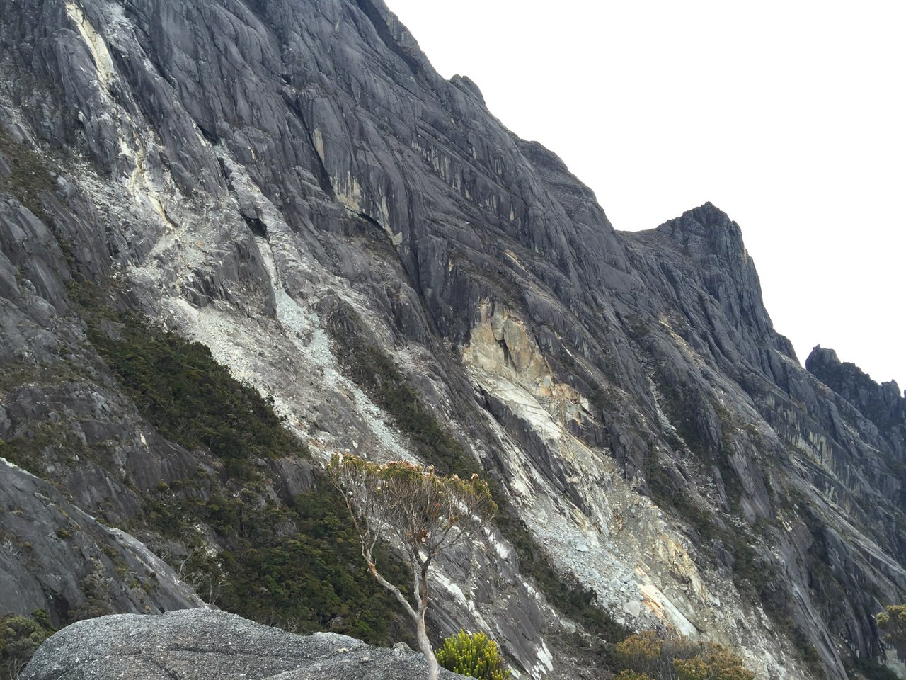 Kota Kinabalu climbing 4190