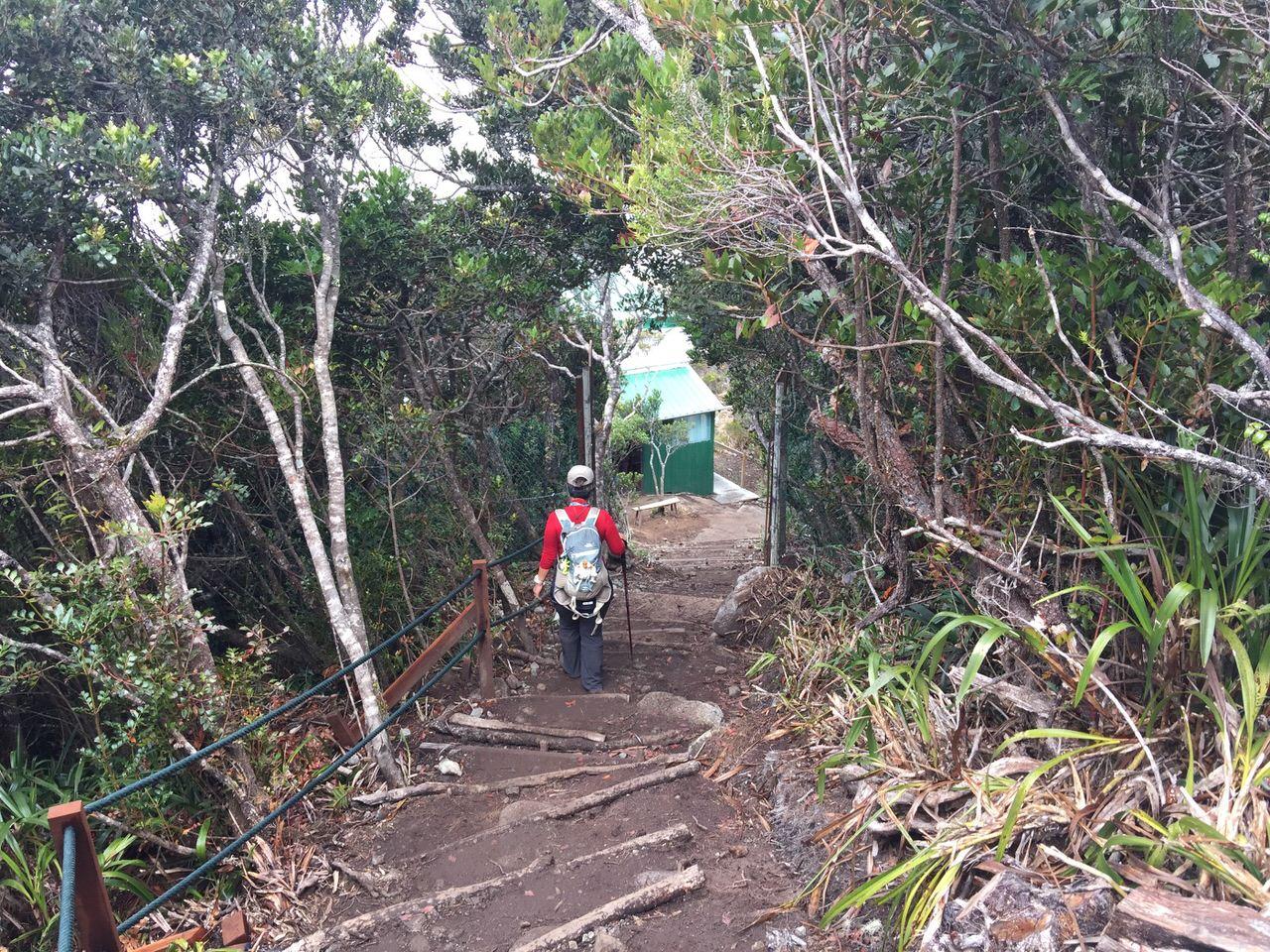 Kota Kinabalu climbing 4192