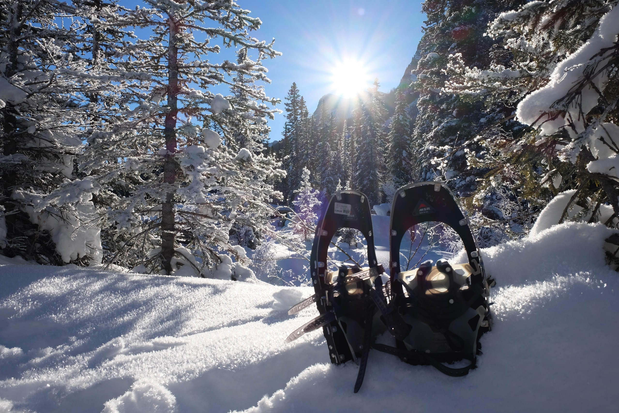 Banff snow shoe 3980