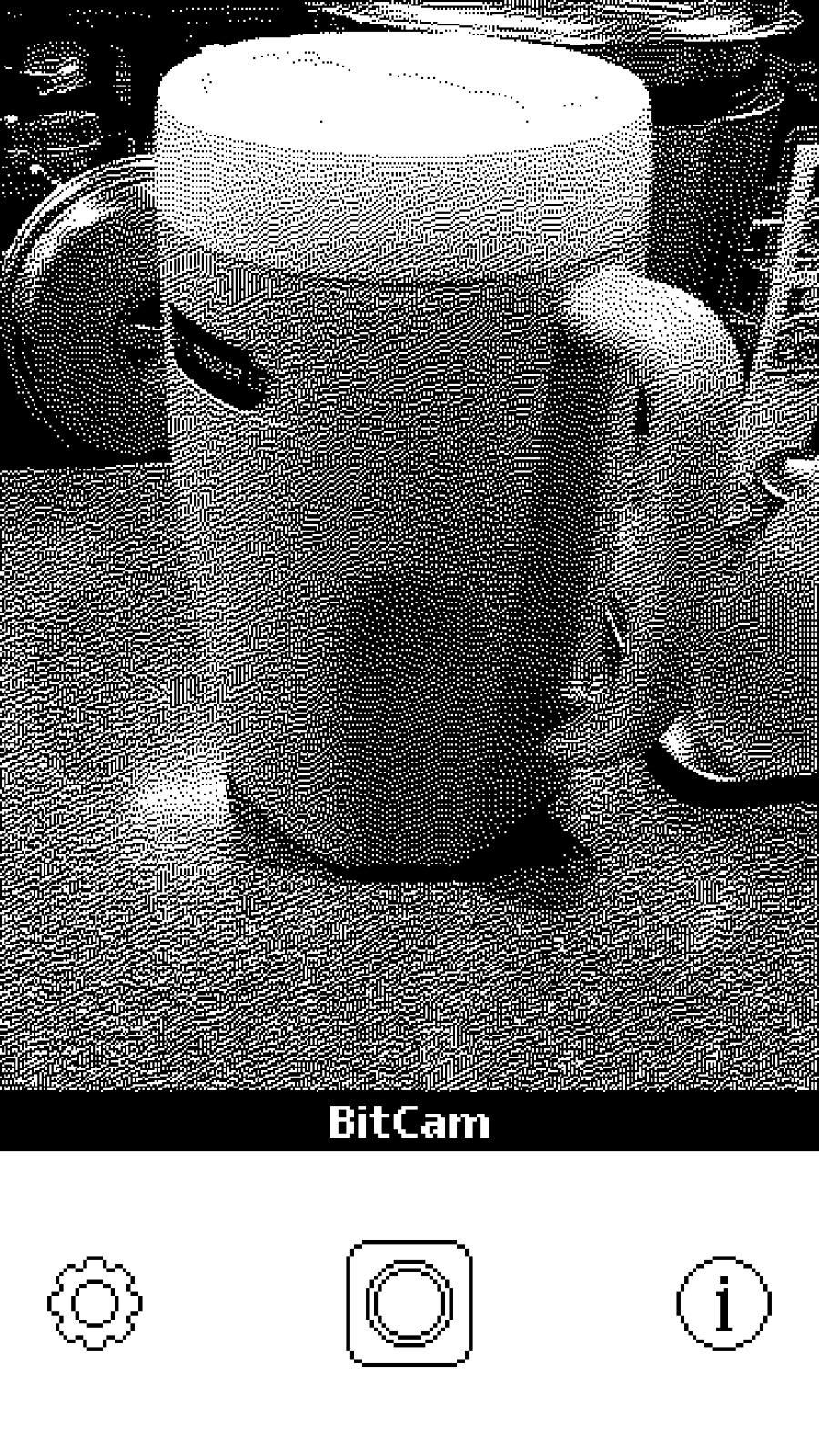 Bitcamera 6065