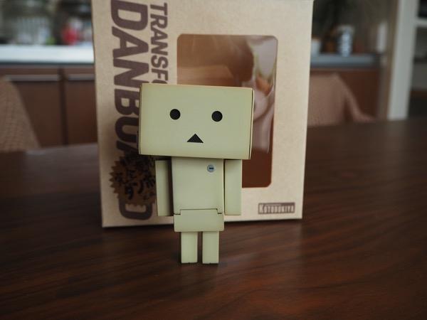 Danboard 0060