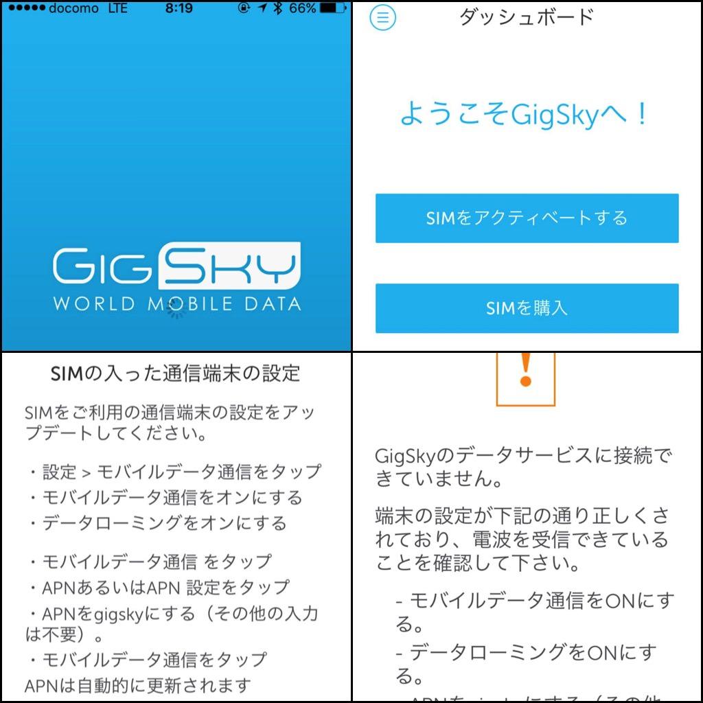 Gigsky manual 2016