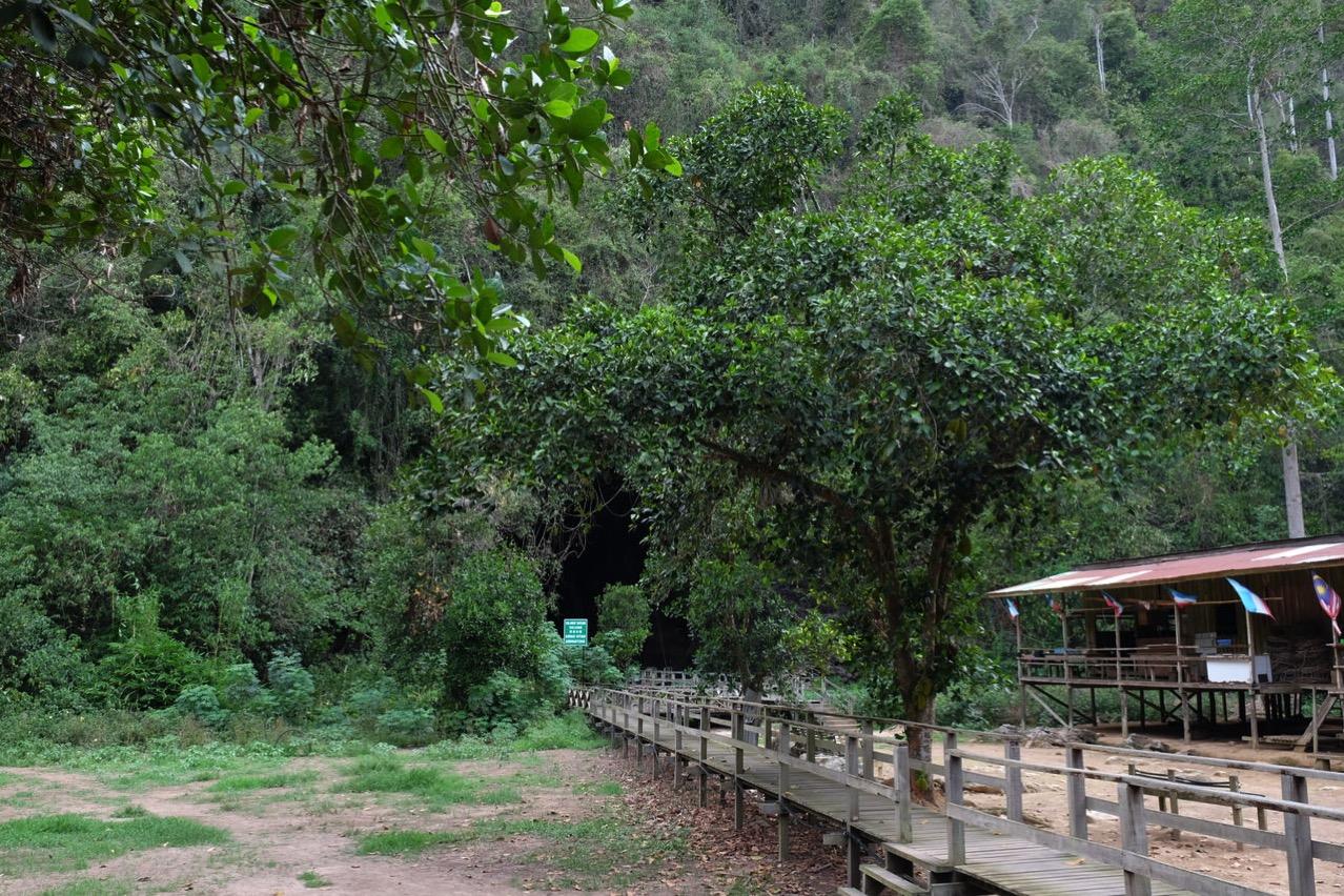 Gomantong cave 9739