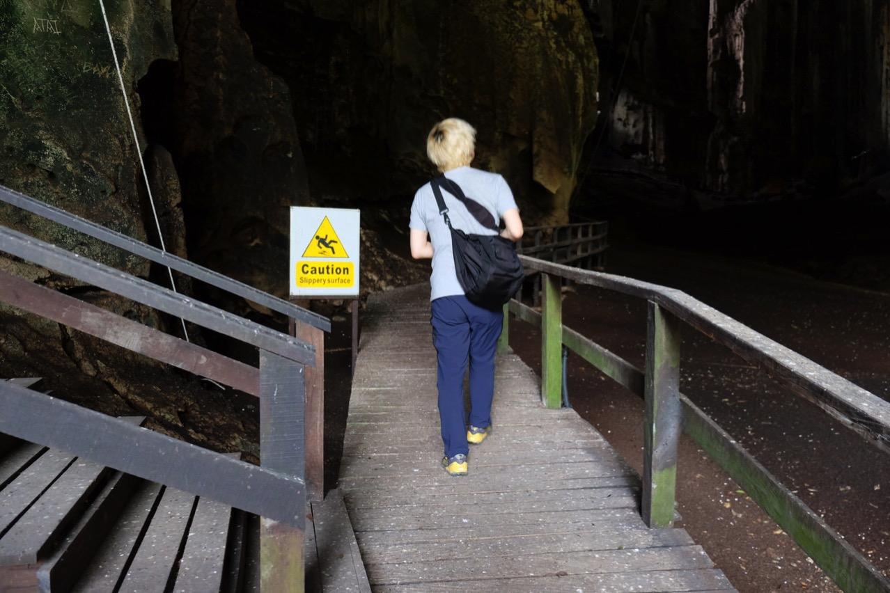 Gomantong cave 9745