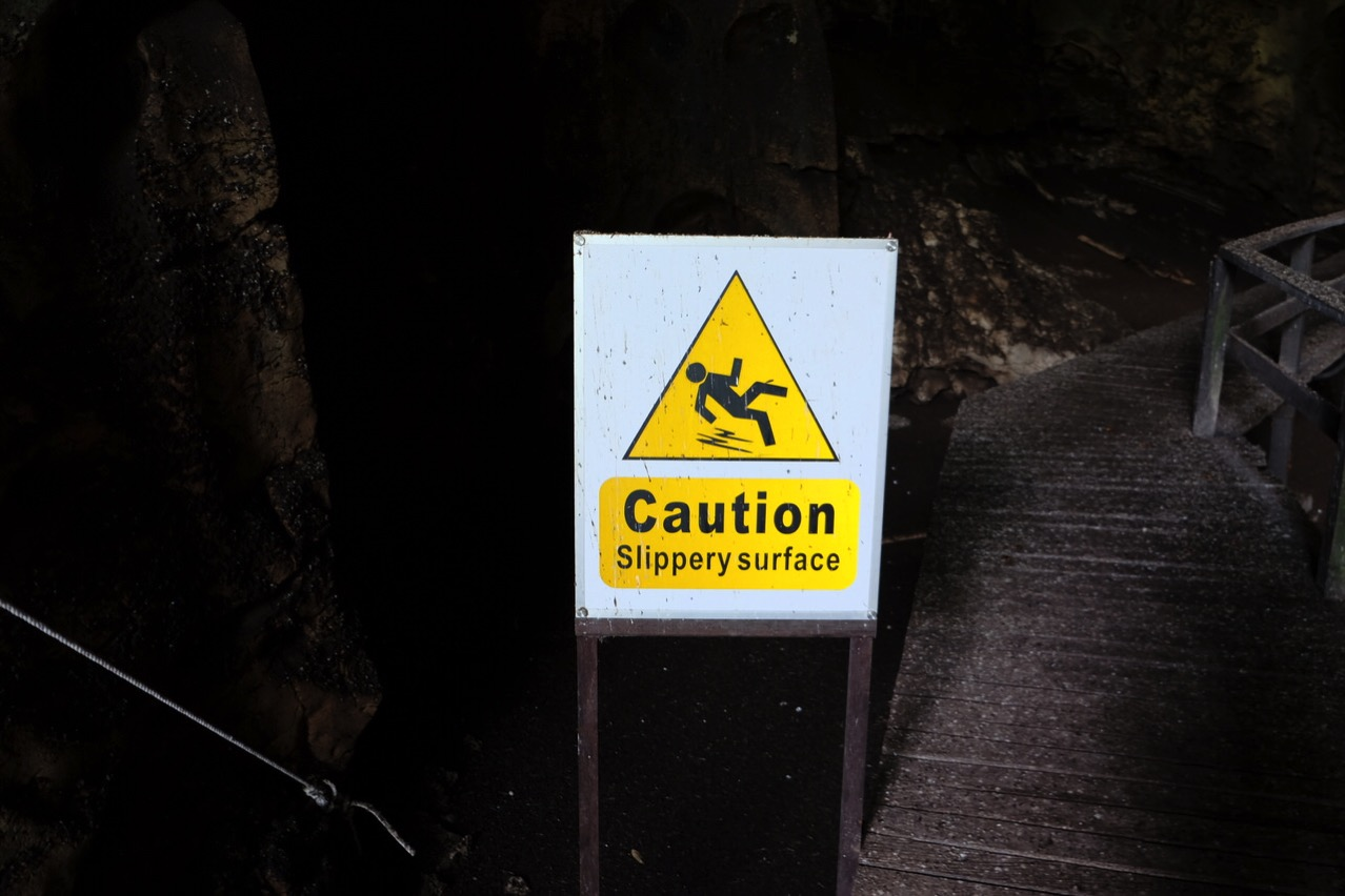 Gomantong cave 9746