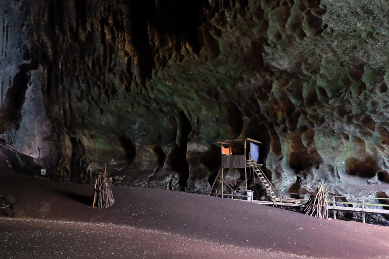 Gomantong cave 9754