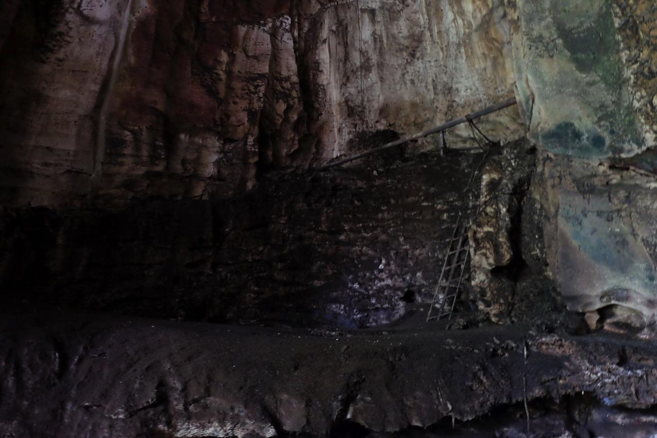Gomantong cave 9756