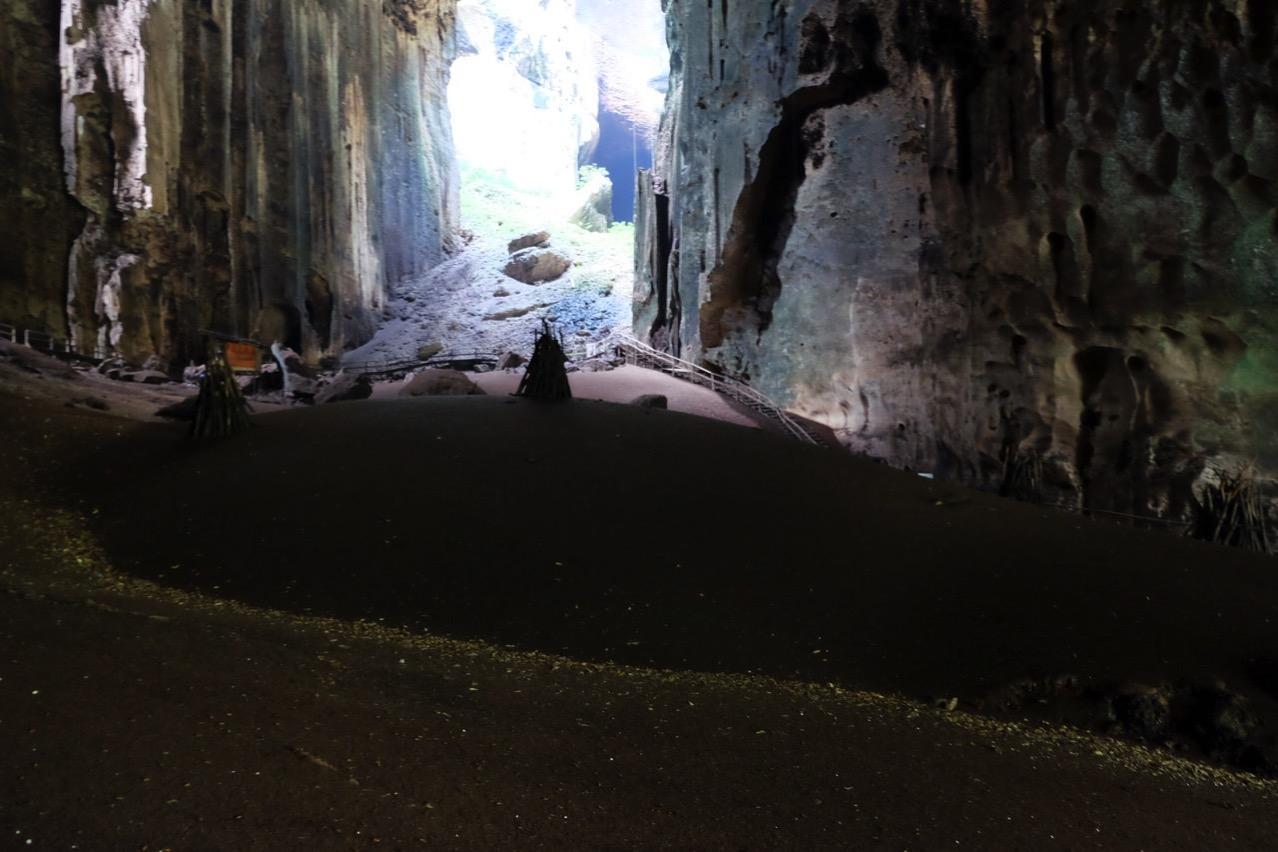 Gomantong cave 9760