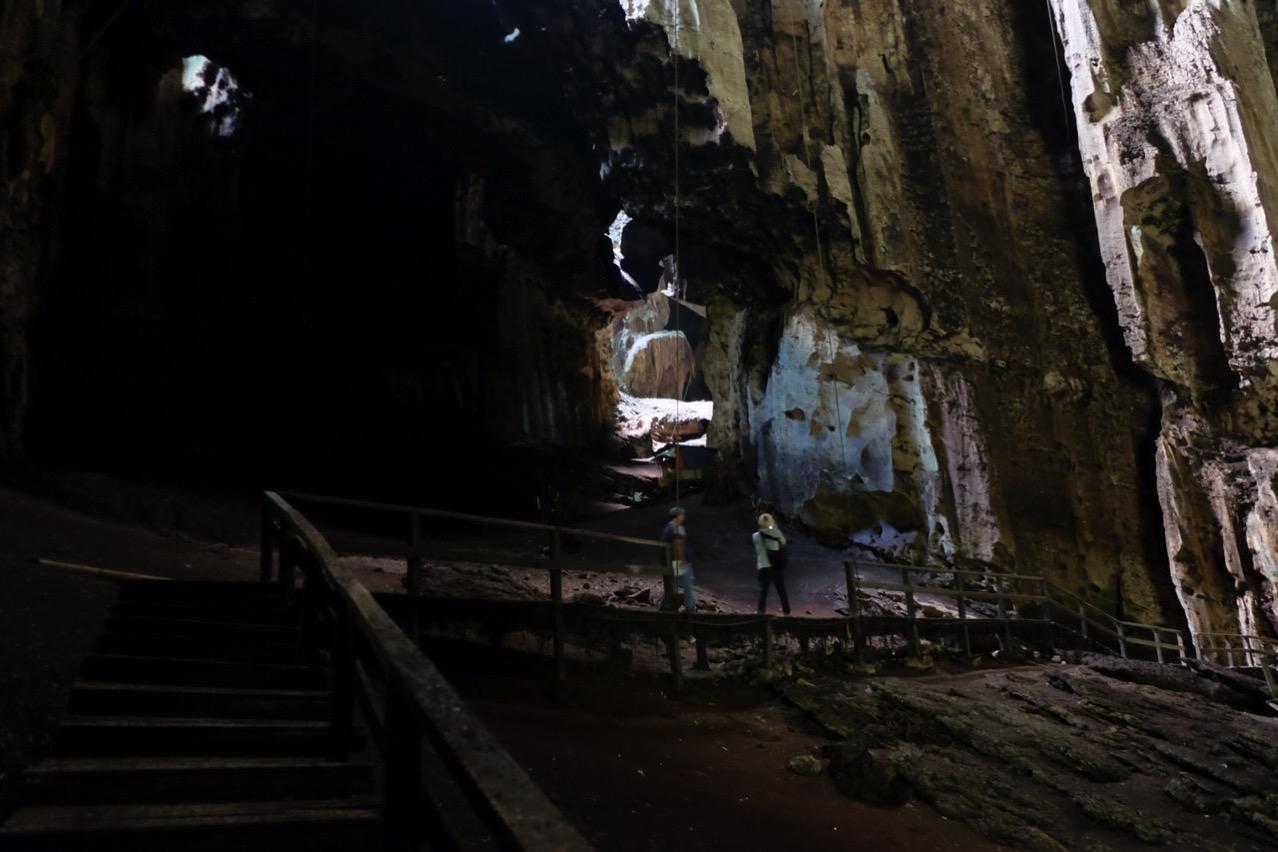 Gomantong cave 9765