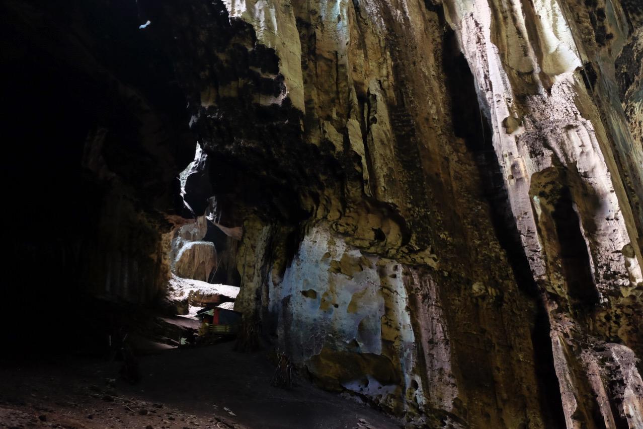 Gomantong cave 9768