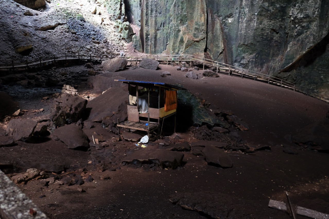 Gomantong cave 9769