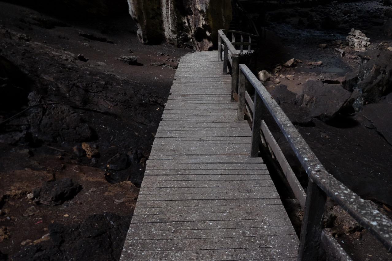 Gomantong cave 9771