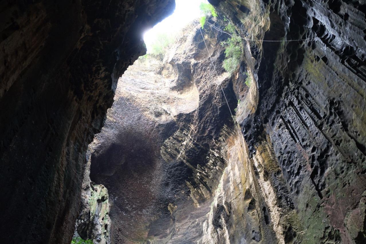 Gomantong cave 9781