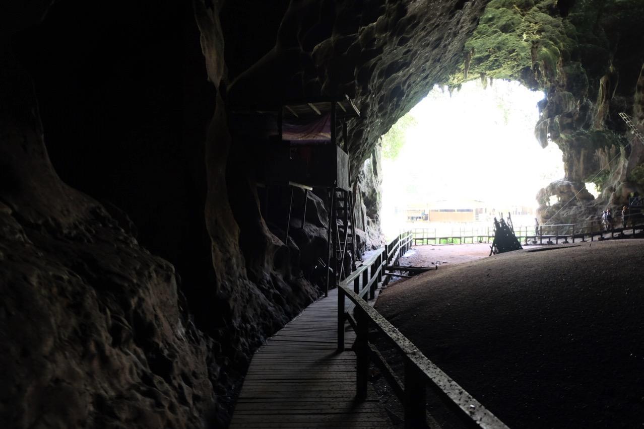Gomantong cave 9799