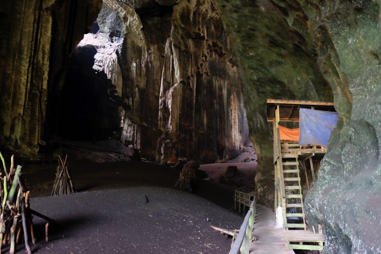Gomantong cave 9802