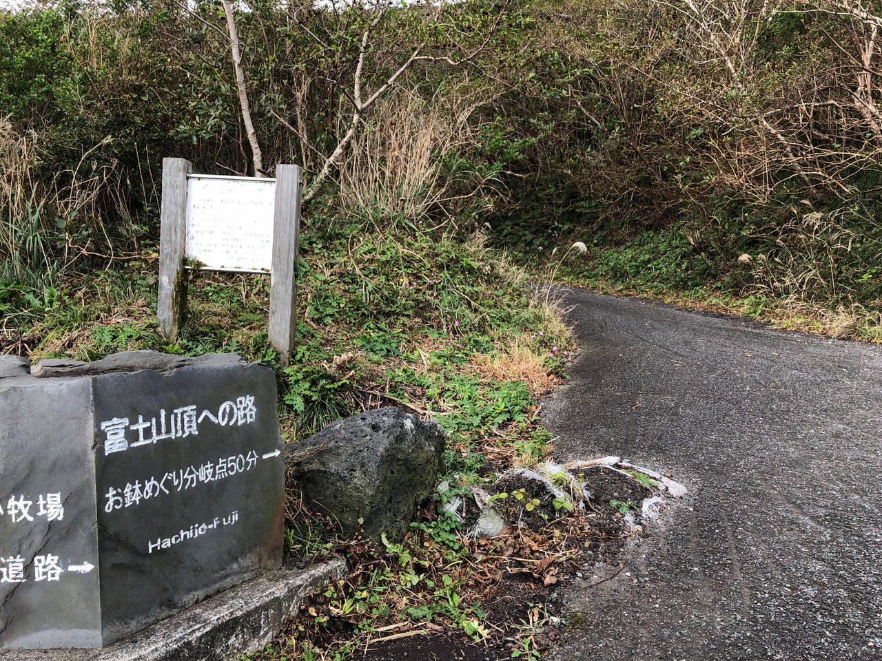 Hachijojima 16090134