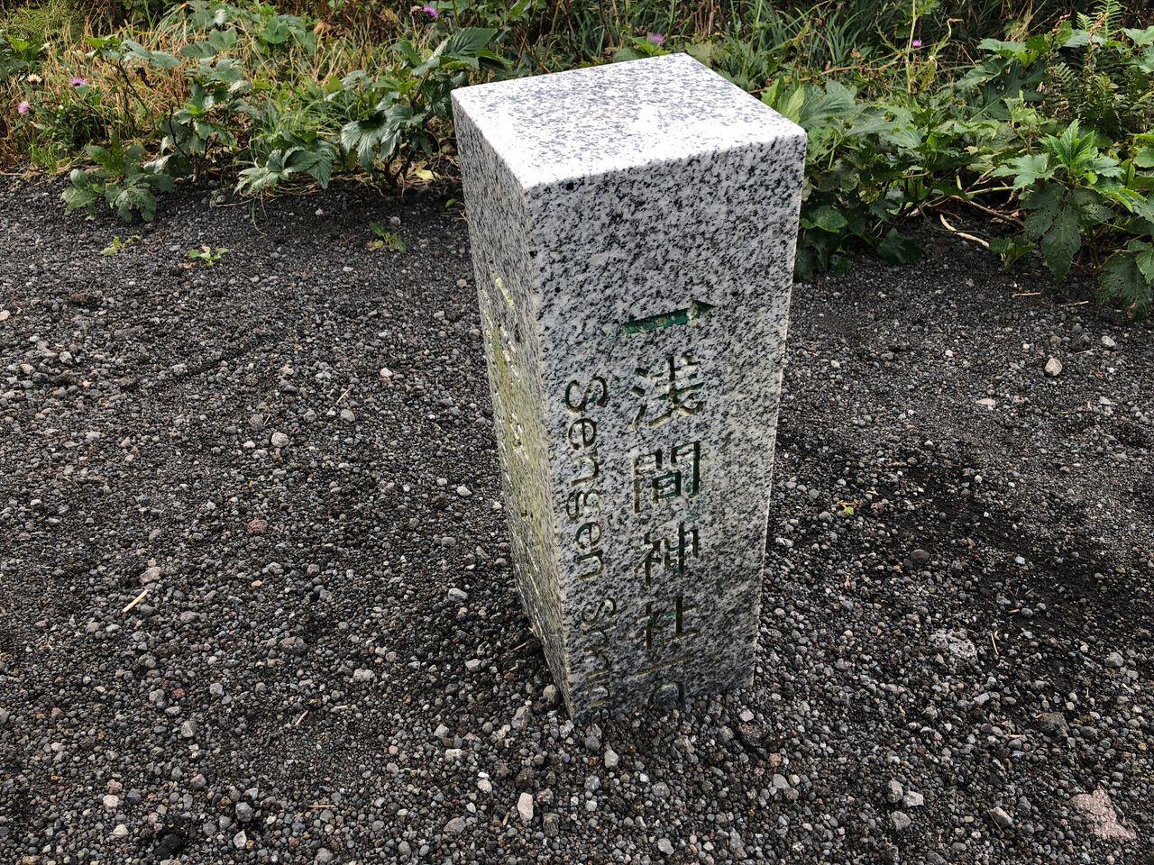 Hachijojima 16110356