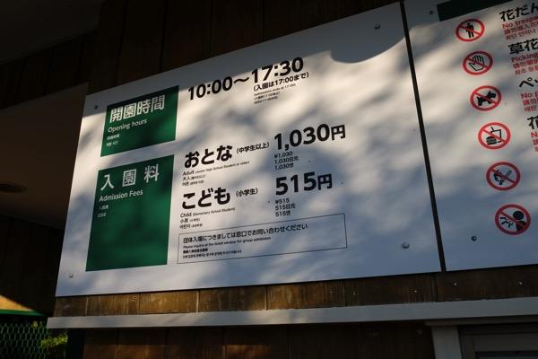 Hieizan 0470