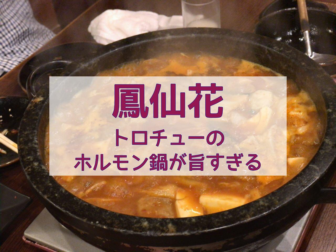 「鳳仙花(麻布十番)」甘辛くて旨いフワフワでトロトロでプルプルの絶品ホルモン鍋