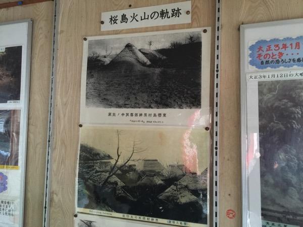 Kagoshima 8482