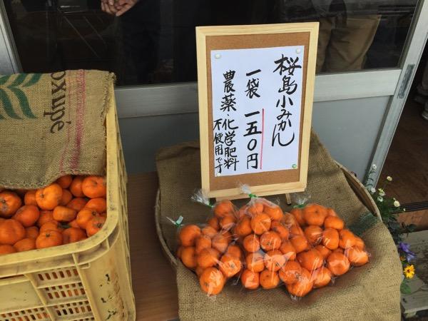 Kagoshima 8501