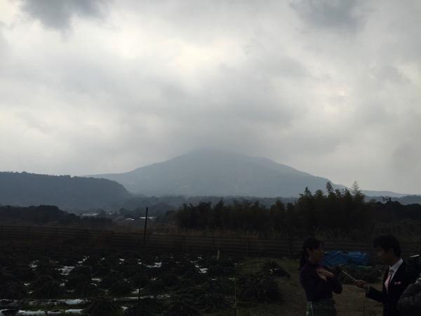 Kagoshima 8541