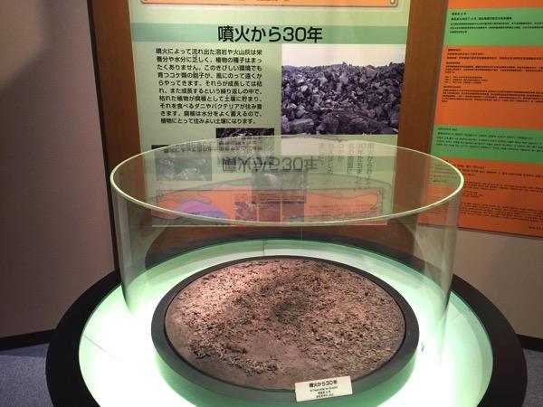 Kagoshima 8560