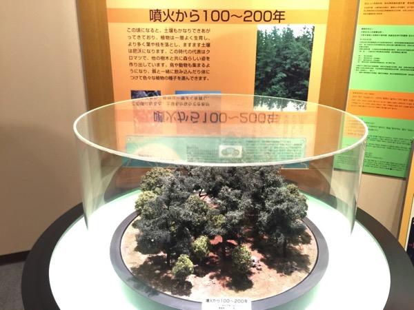 Kagoshima 8562