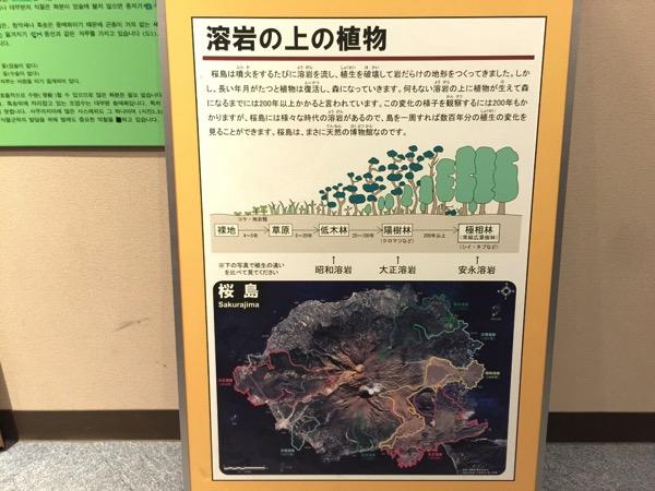 Kagoshima 8564