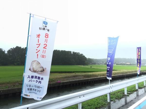 Kaki no hoshi 4454