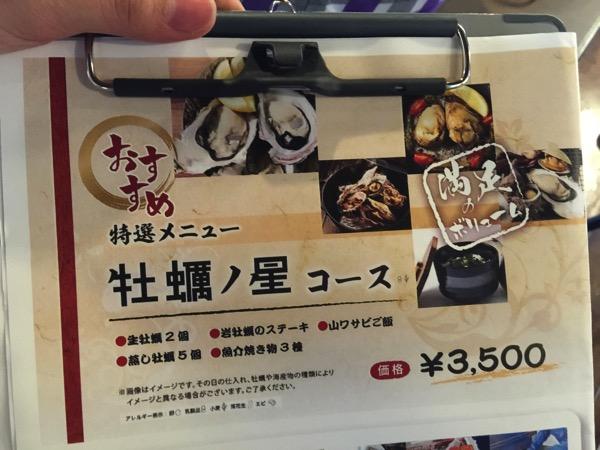 Kaki no hoshi 4459